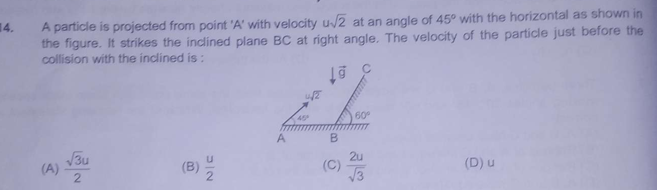 A particle is projected from point 'A' with velocity u √2 at an angle of 45∘ with the horizontal as shown in the figure. It strikes the inclined plane BC at right an